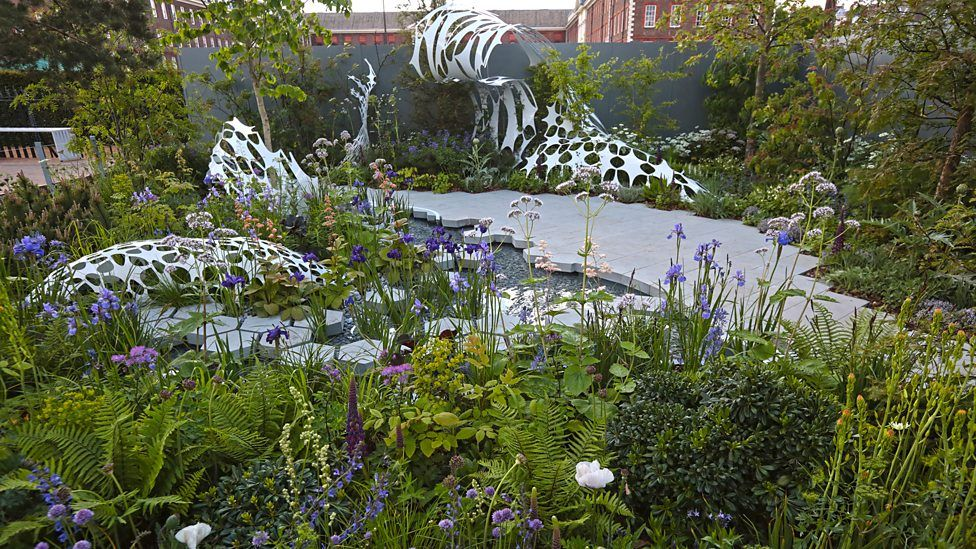 Bbc Two Rhs Chelsea Flower Show 2019 The Space To Grow Gardens