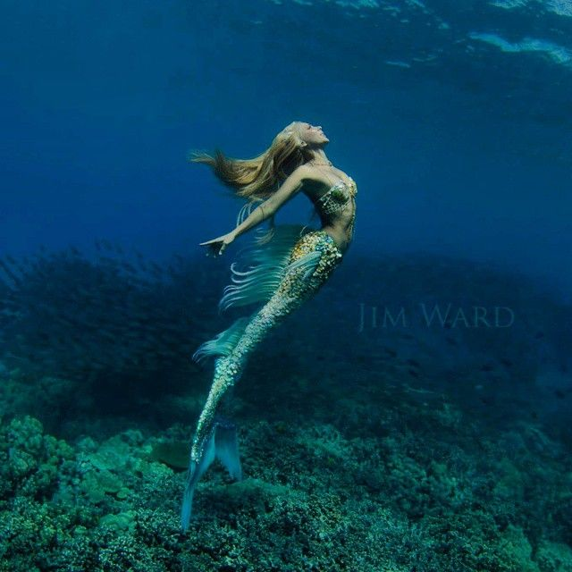 Hannah Fraser is a professional underwater mermaid, creating her - marine biologist job description