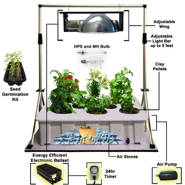 A great starting point for indoor gardeners check it out now at