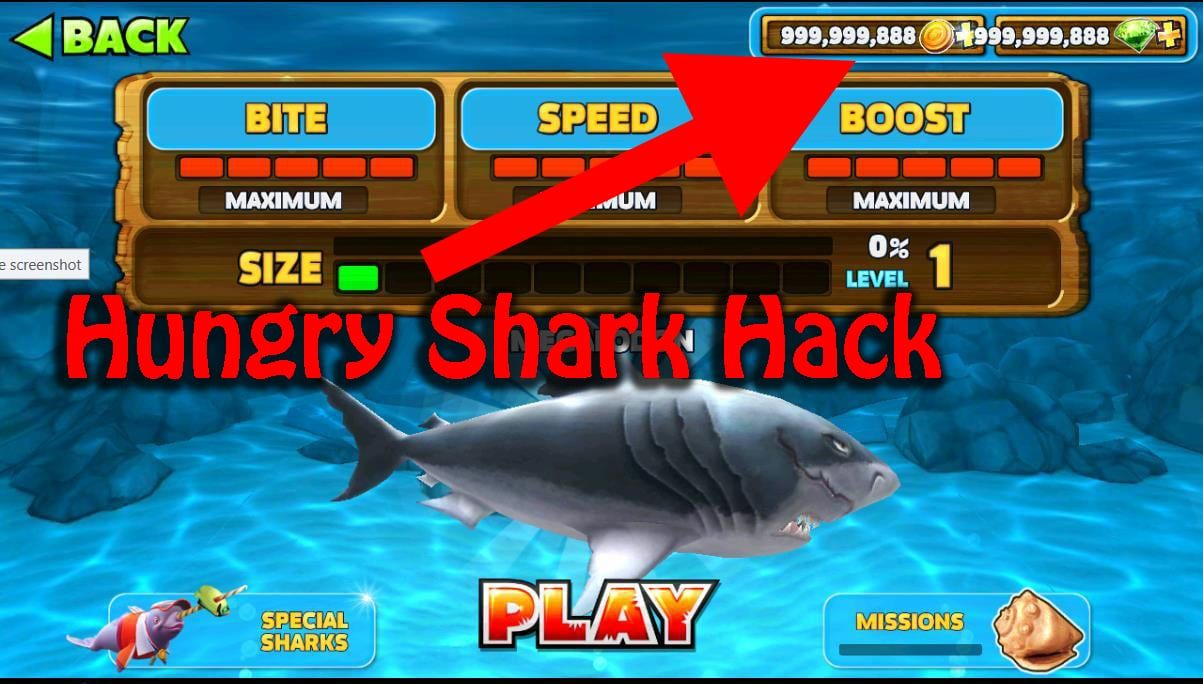 How To Get Money In Hungry Shark