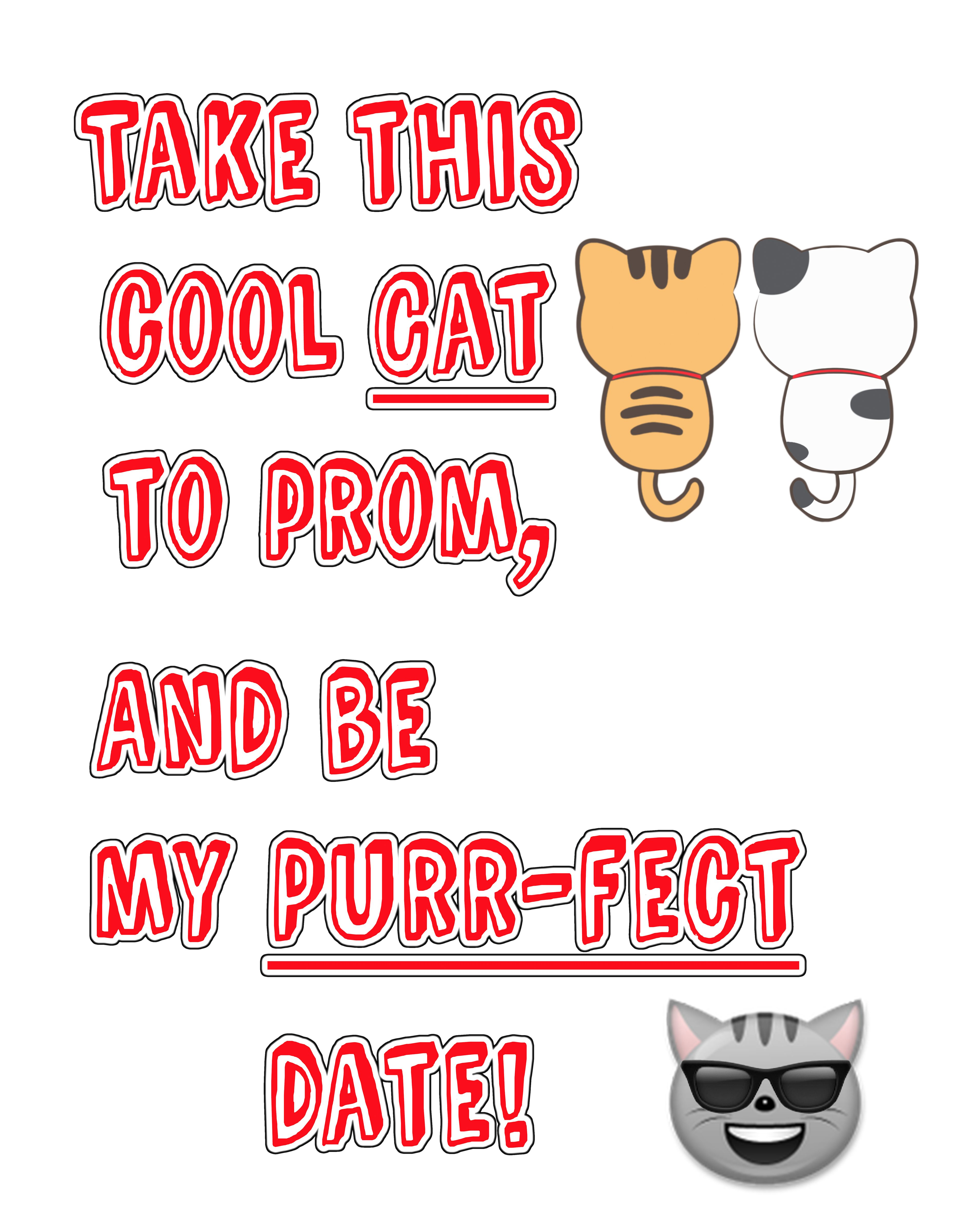 Take this cool cat to prom/ and be my purrrect date! Prom