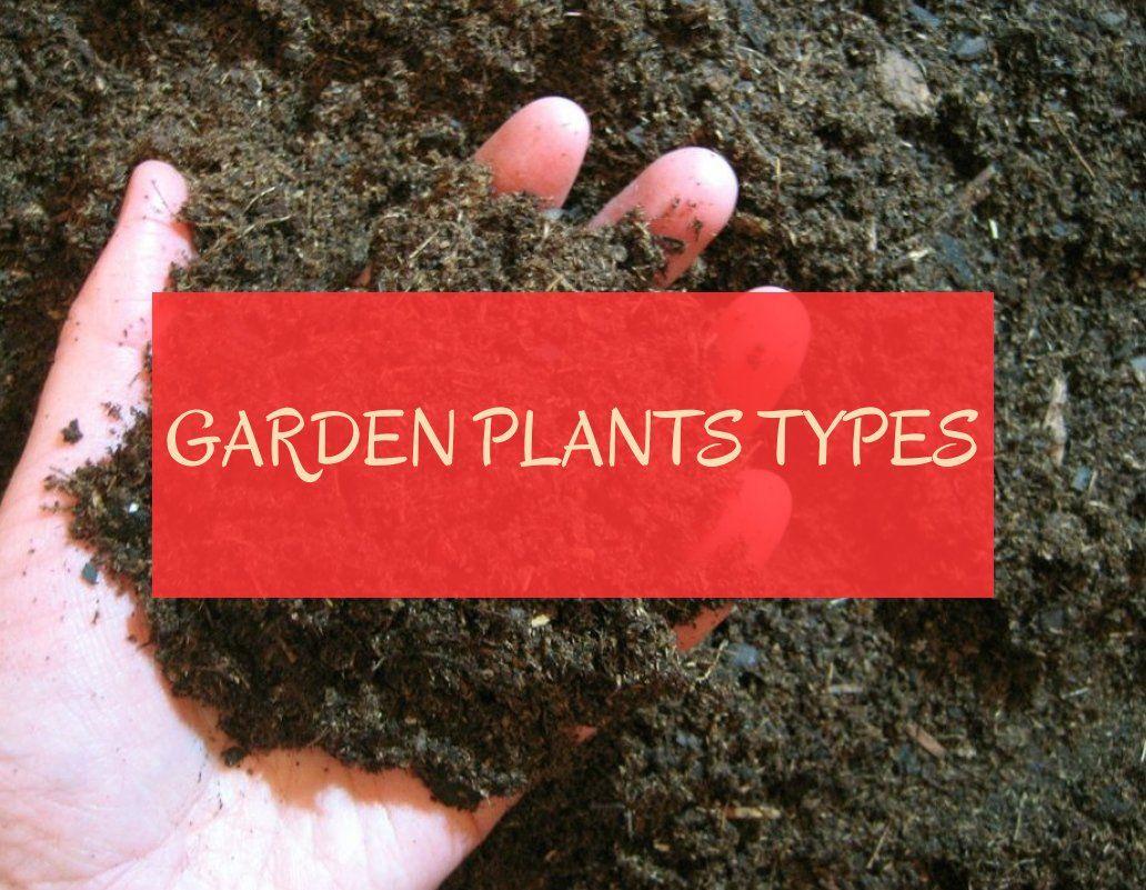 garden plants types