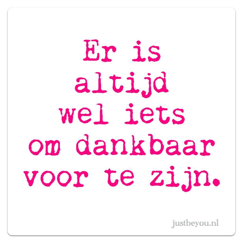 dankbaarheid spreuken dankbaar #dankbaarheid #spreuk #citaat #nederlands #teksten  dankbaarheid spreuken