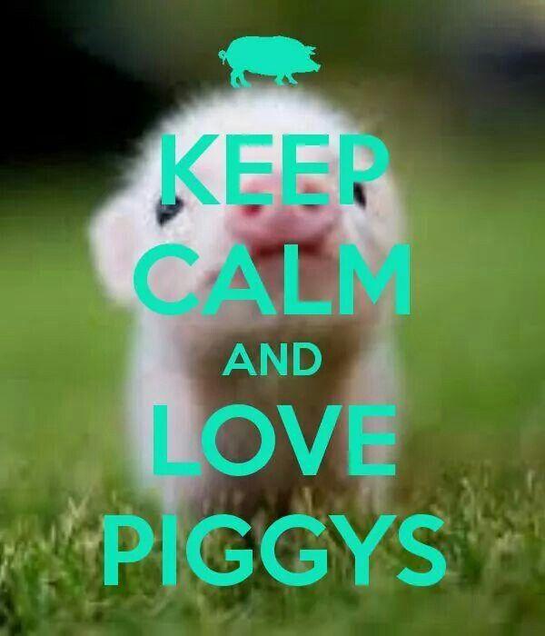 Love piggys!