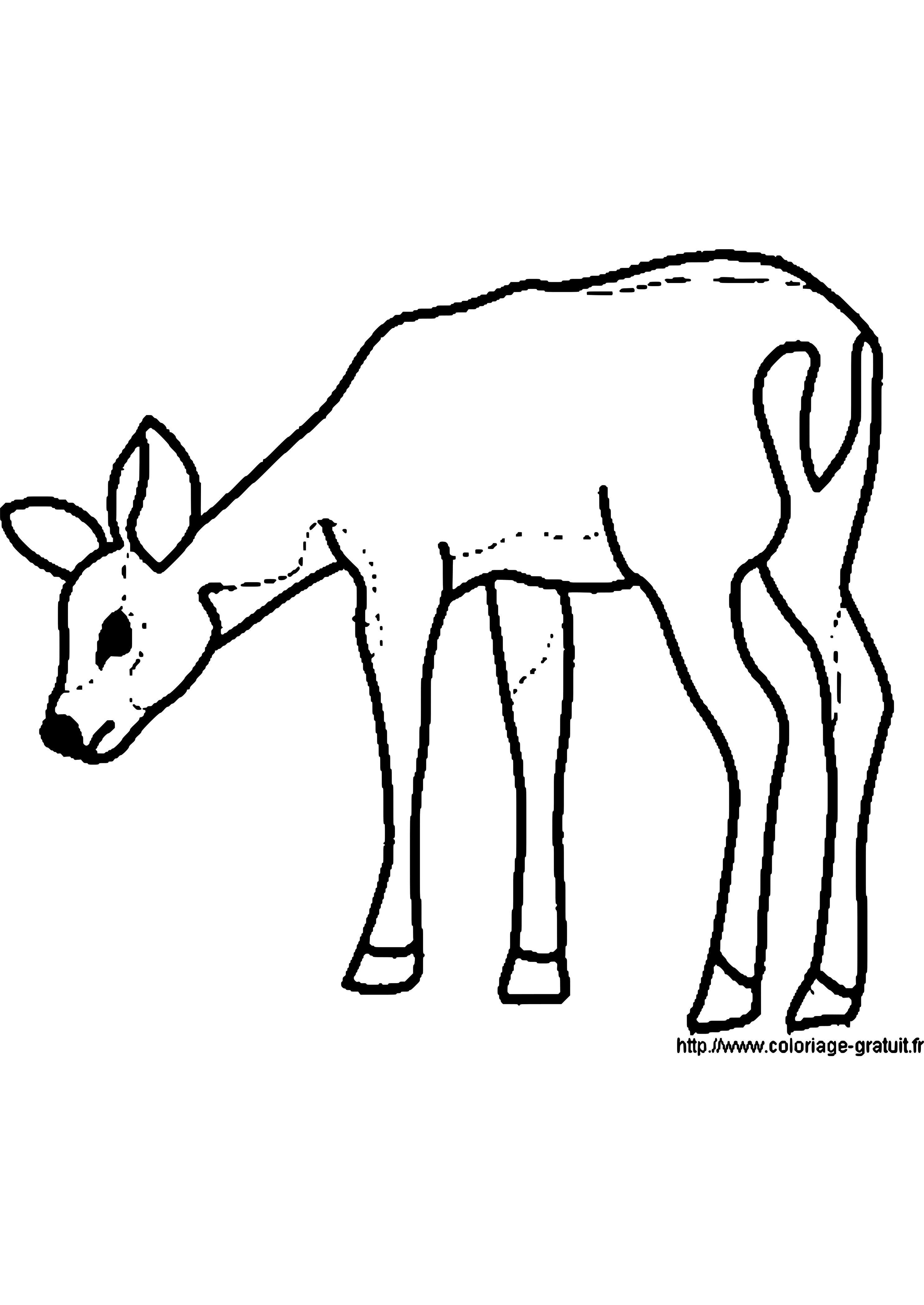 einzigartig kuh malen vorlage  malvorlagen kühe malen