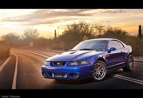 Tony Nesbitt 2003 Ford Cobra SVT Terminator Mustang - http://onlineautopics.info/tony-nesbitt-2003-ford-cobra-svt-terminator-mustang-2/