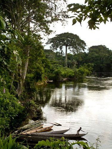Suriname. By Benno Neeleman