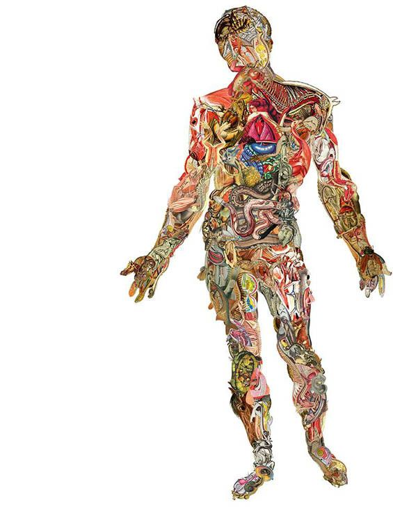 Collages hechos con recortes de revistas viejas | anatomia ...