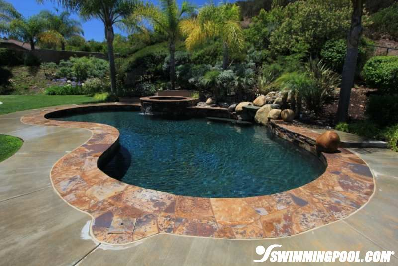 kidney shaped pool with aggregate coping landscapepool designs - Gunite Pool Design Ideas