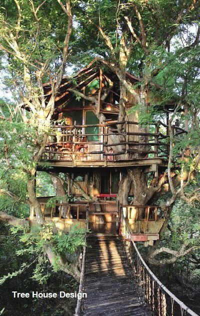 Best Tree House Designs In 2020 Cool Tree Houses Tree House Diy Tree House Designs