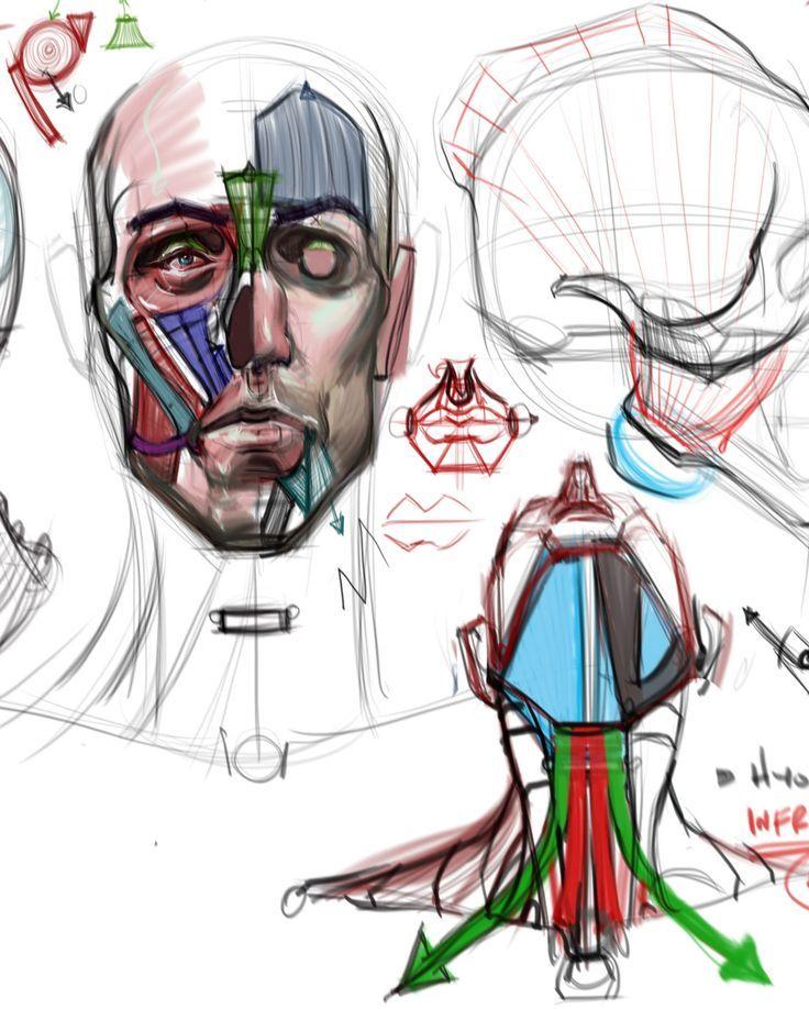 michael hampton anatomy - Sök på Google