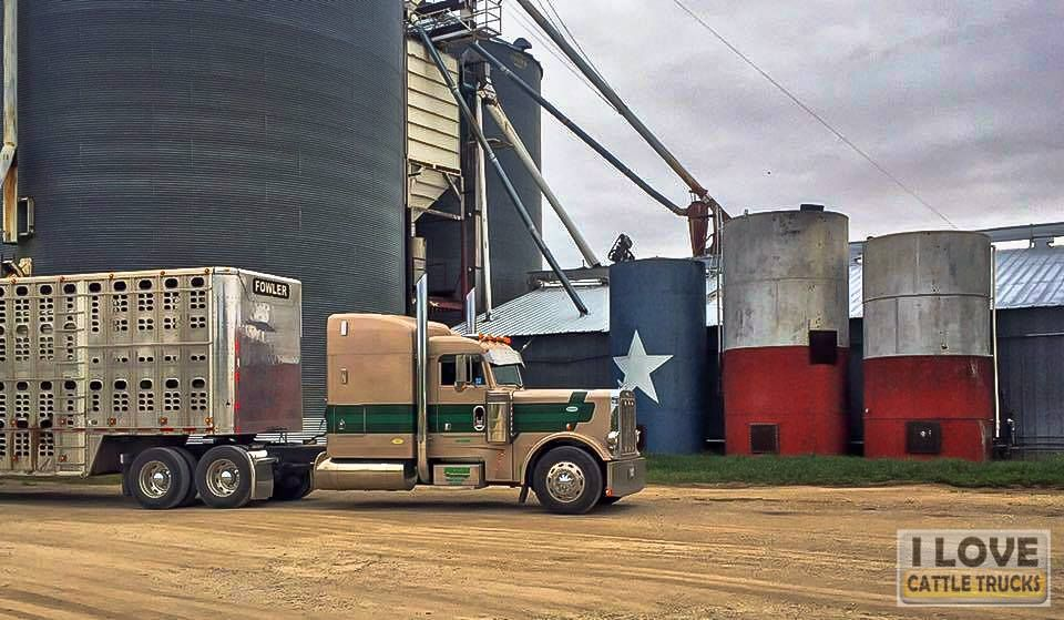 Thanks and all credits to Dylan Fowler Truck paint jobs