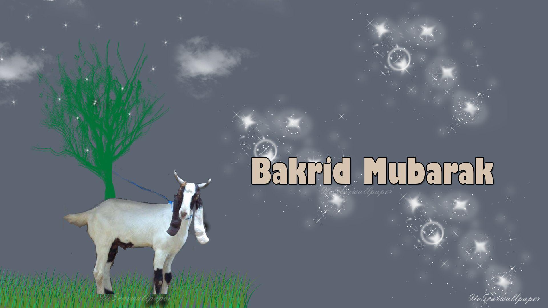 Happy Eid Ul Adha Bakra Eid Eid Ul Adha Happy Eid Happy Eid Al Adha
