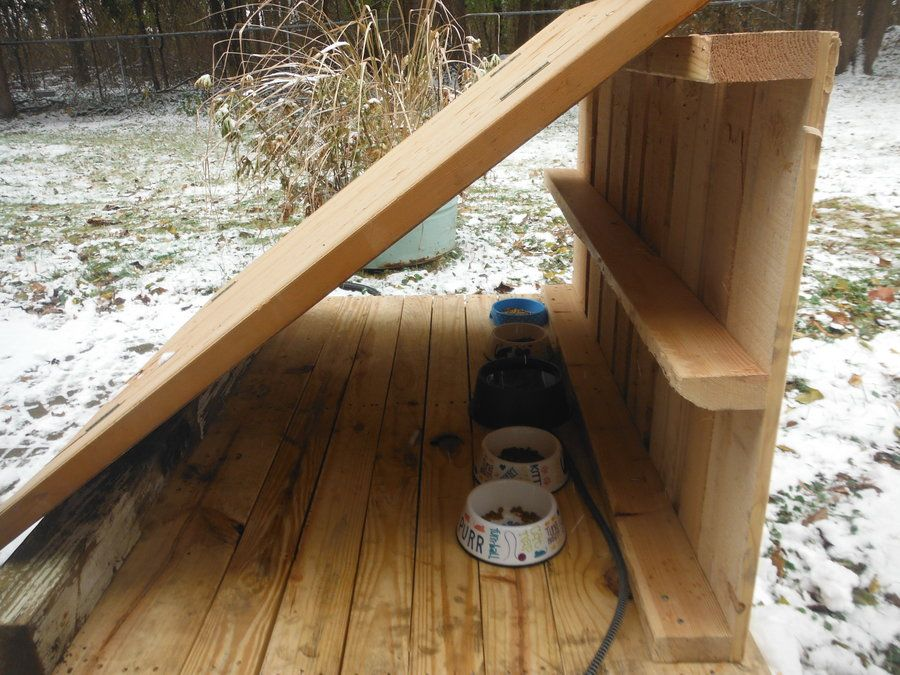 Feeding Station Cat feeding station, Outdoor cat shelter