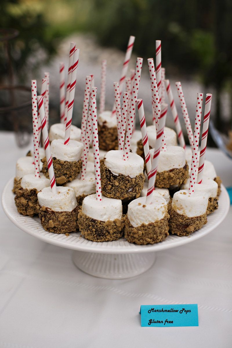 S'mores marshmallow pops - dip in melted chocolate then roll in graham cracker crumbs