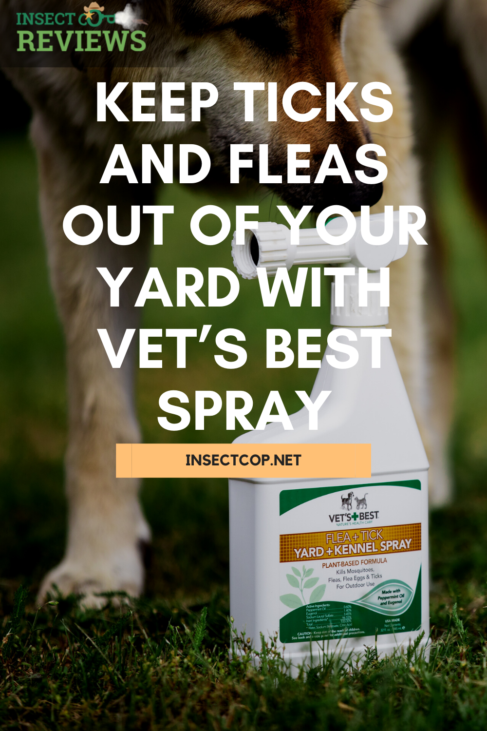 7740b77ef7e2699a5d3f209e5f8502d2 - How To Get Fleas And Ticks Out Of Your Yard
