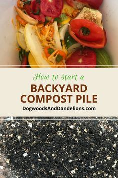 How to Start a Backyard Compost Pile