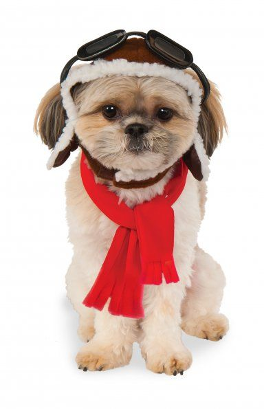 Snoopy Red Baron Costume For Dogs There is no better reason than Halloween  to dress our cats and dogs in the latest pet costumes! 0a1e13d64
