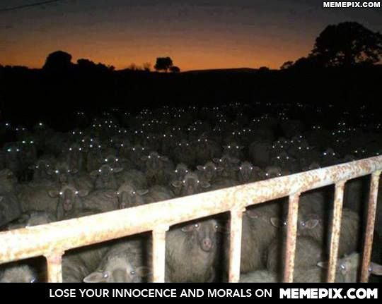 The Silence of the Lambs - MemePix