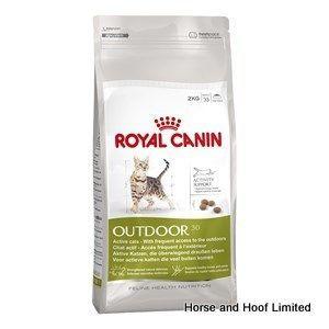 Royal Canin Outdoor Cat Food 2kg Cat Food Cat Food Reviews Cat Food Coupons