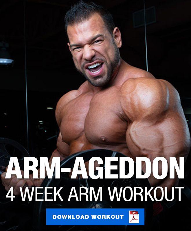 4 Week Arm Ageddon Blast Arm Workout Arm Workout Workout Training Programs Workout Program Gym
