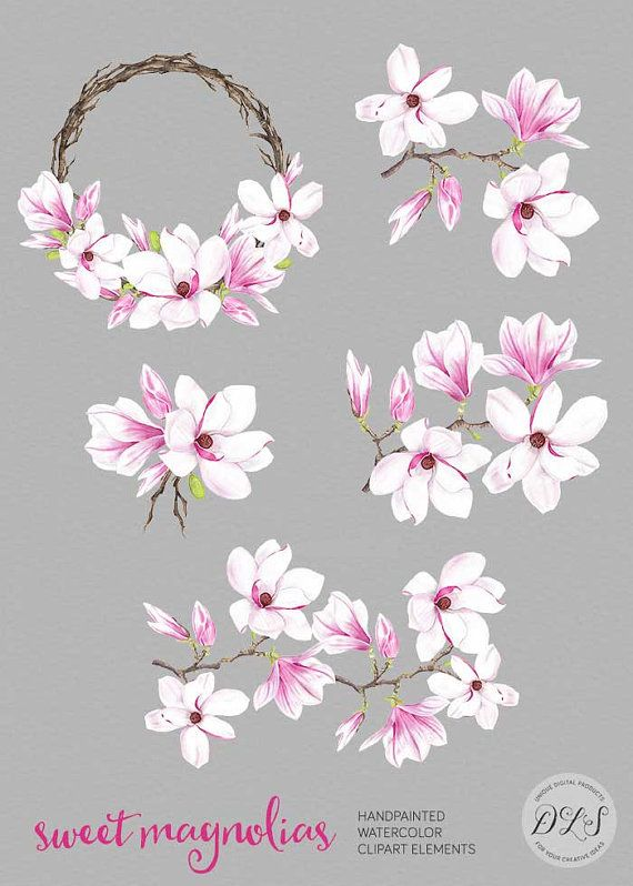 Watercolor Flower Clipart Quot Sweet Magnolias Quot Pink Spring Flower Digital Clip Art Wedding Invitation Han Flower Clipart Flower Art Watercolor Flowers