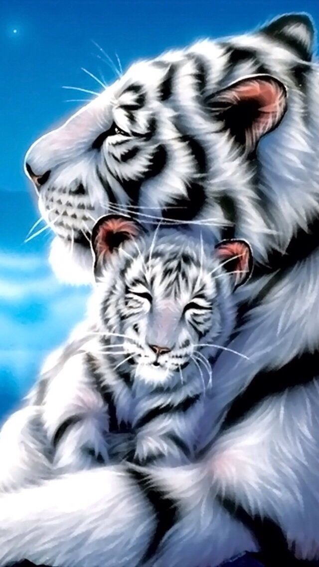 White Tiger Iphone Wallpaper Background Animals Wild Animals Cute Animal Drawings
