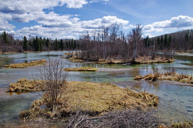 Looking down the Cold River at the start of the Boreal Trail, Saskatchewan