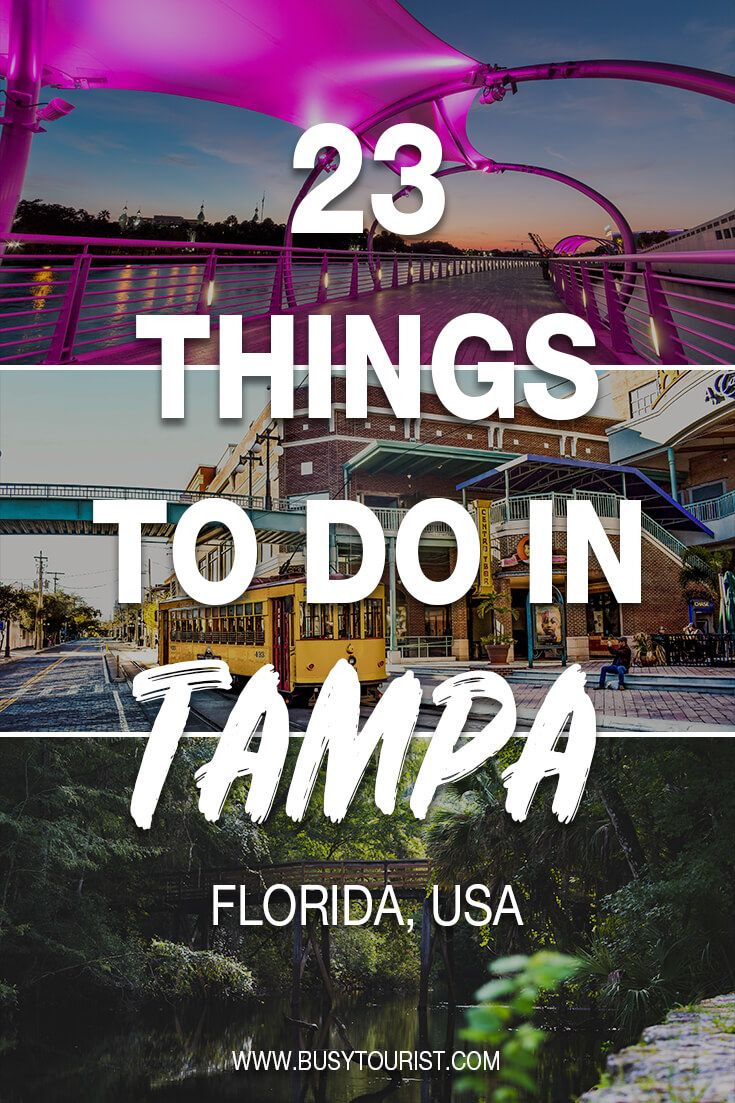 23 Best & Fun Things To Do In Tampa (Florida)