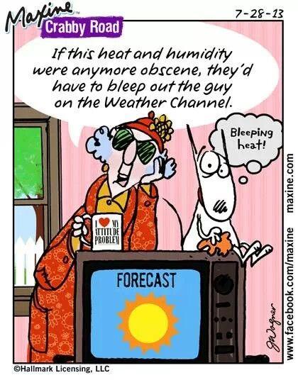 Heat And Humidity Maxine Humor Obscene
