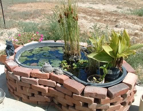 Small garden pond rubber this is the kidney and the for Above ground pond ideas