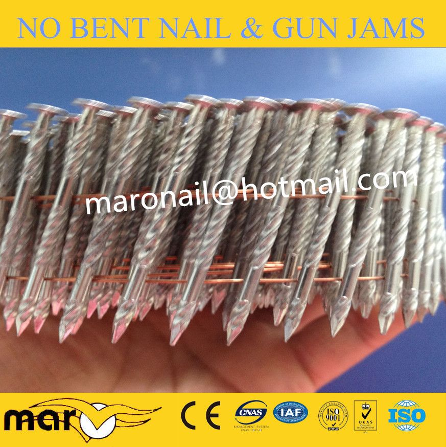 Stainless Steel Ring Shank Nails