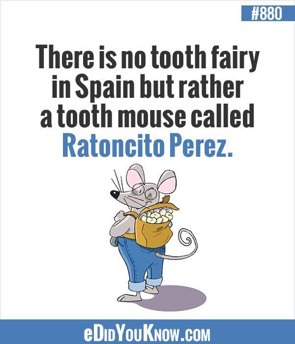 Spain Tooth Fairy