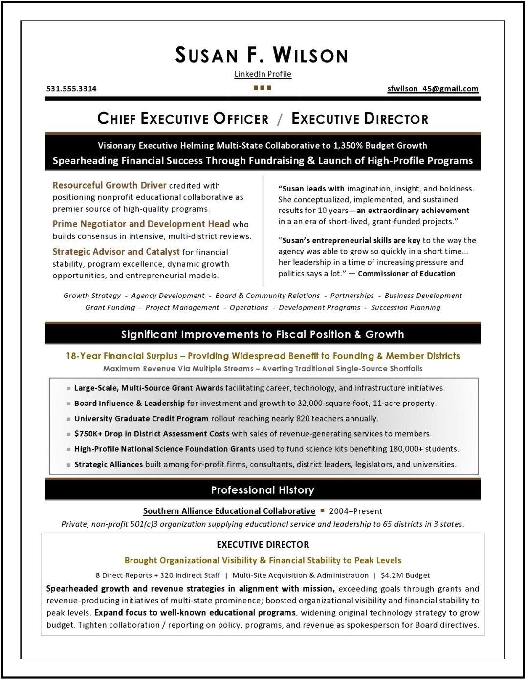 Nonprofit Ceo Resume Sample Executive Resume Professional Resume Writers Resume Writing Services