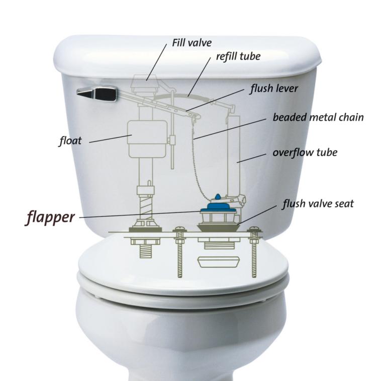 Toilet Not Flushing