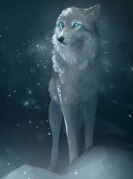 Photo of Wolf ideas