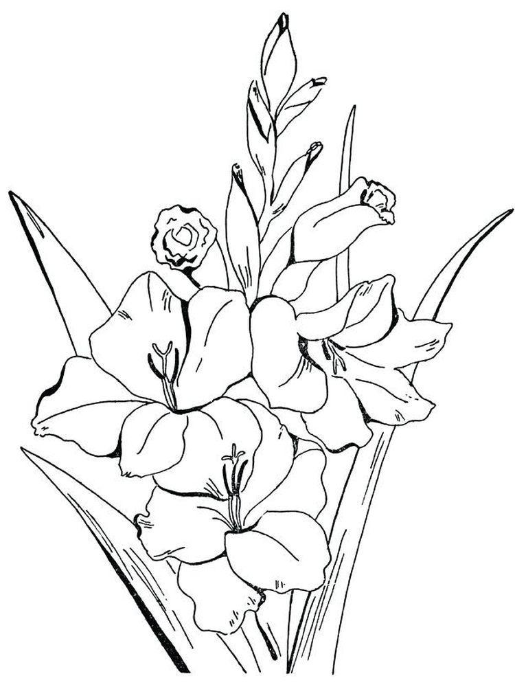 Flower Garden Worksheet Education Com Preschool Coloring Pages Flower Coloring Pages Garden Coloring Pages