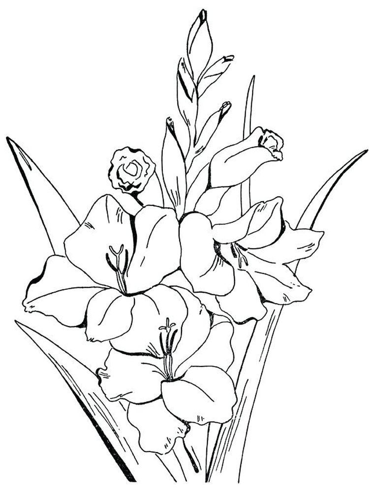 Spring Flowers Printable Printable Flower Coloring Pages Flower