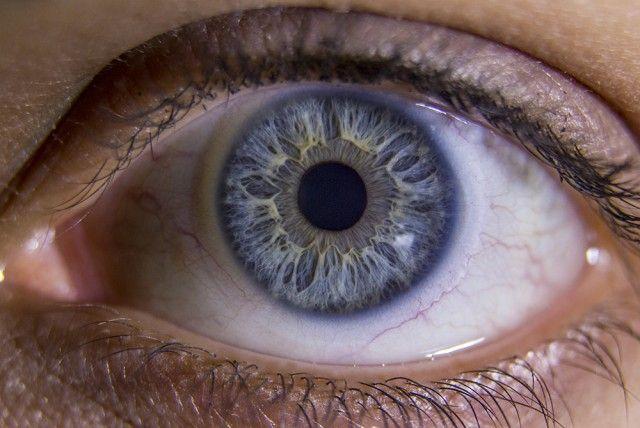 Macro Photo of Human Eye & Iris