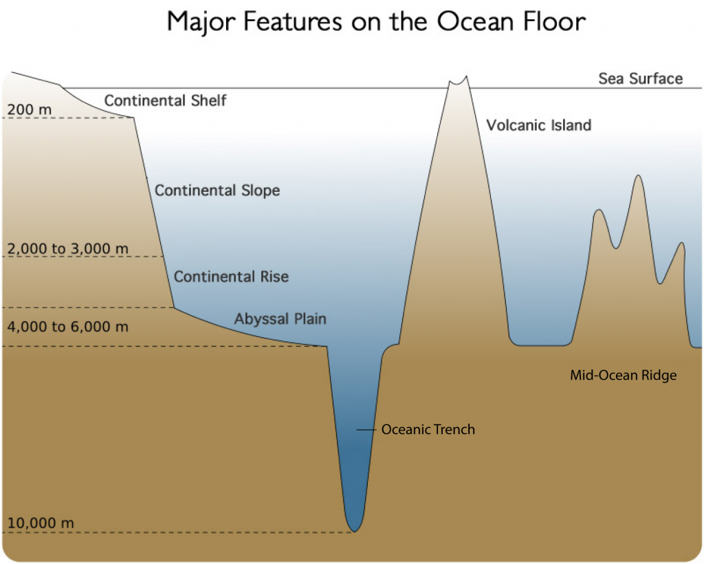 Worksheets Features Of The Ocean Floor Worksheet ocean floor diagram for 5th grader pinterest grader