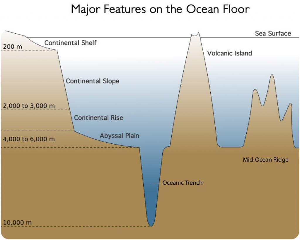 ocean floor diagram for 5th grader [ 1024 x 820 Pixel ]