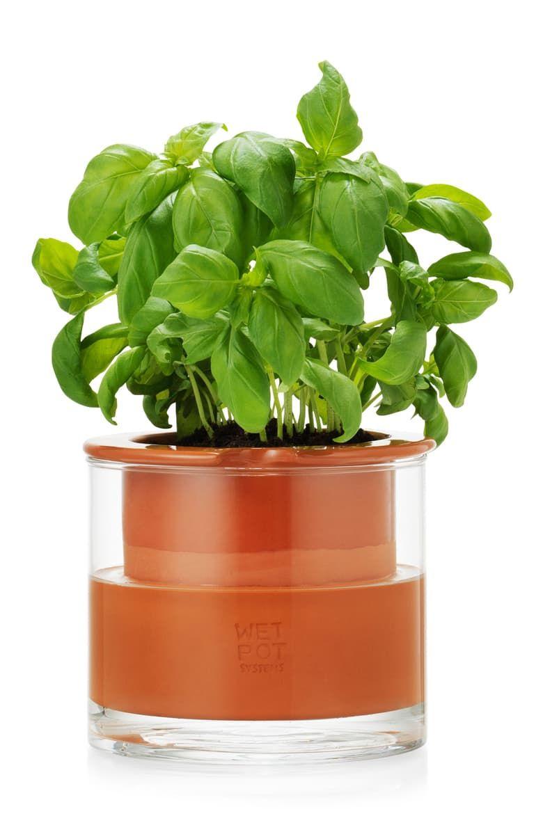 Moma Design Store Self Watering Pot Alternate Giftguide Self