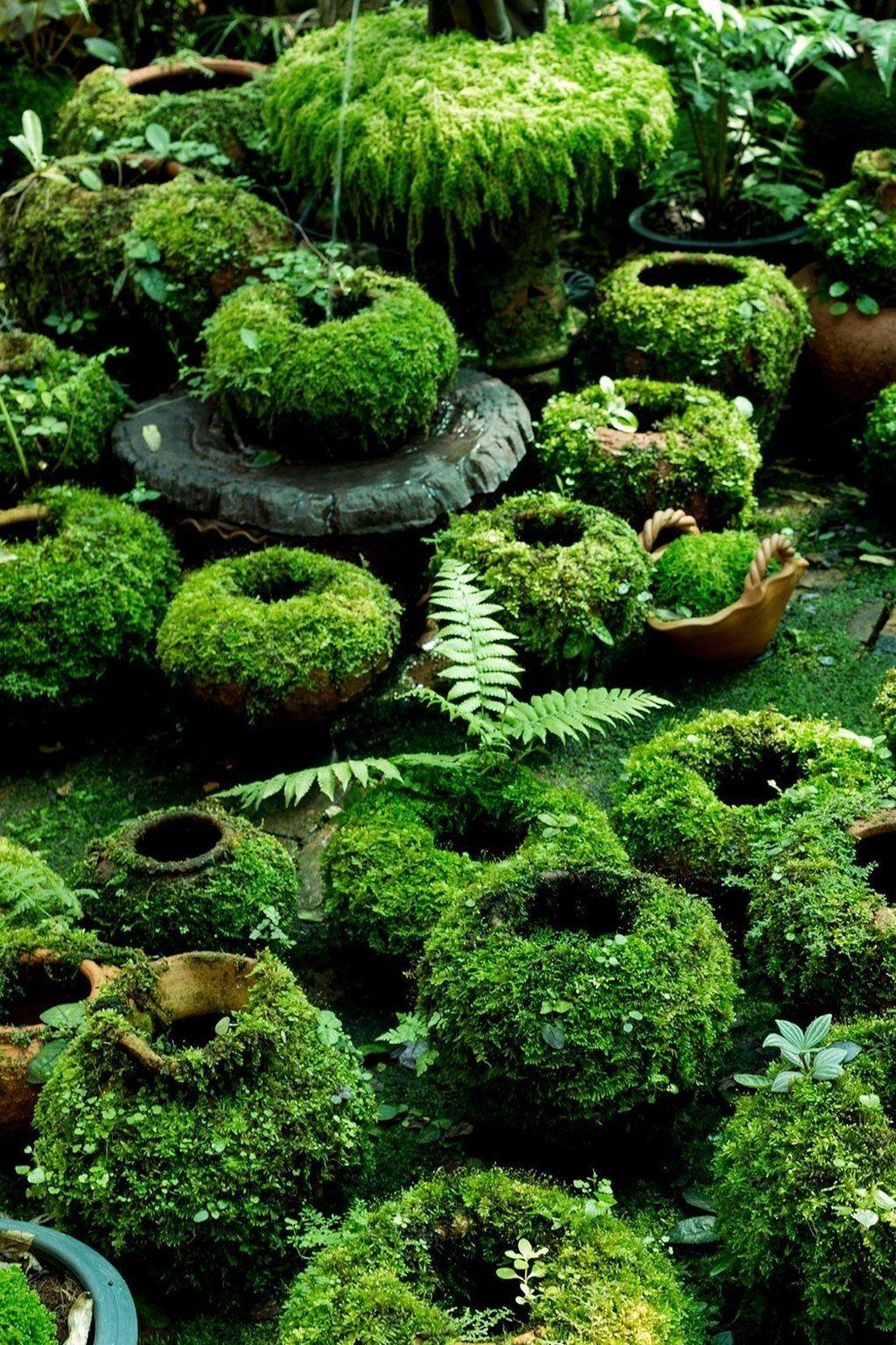 20 Lovely Diy Gardening Ideas More Easier Jardin Jardin