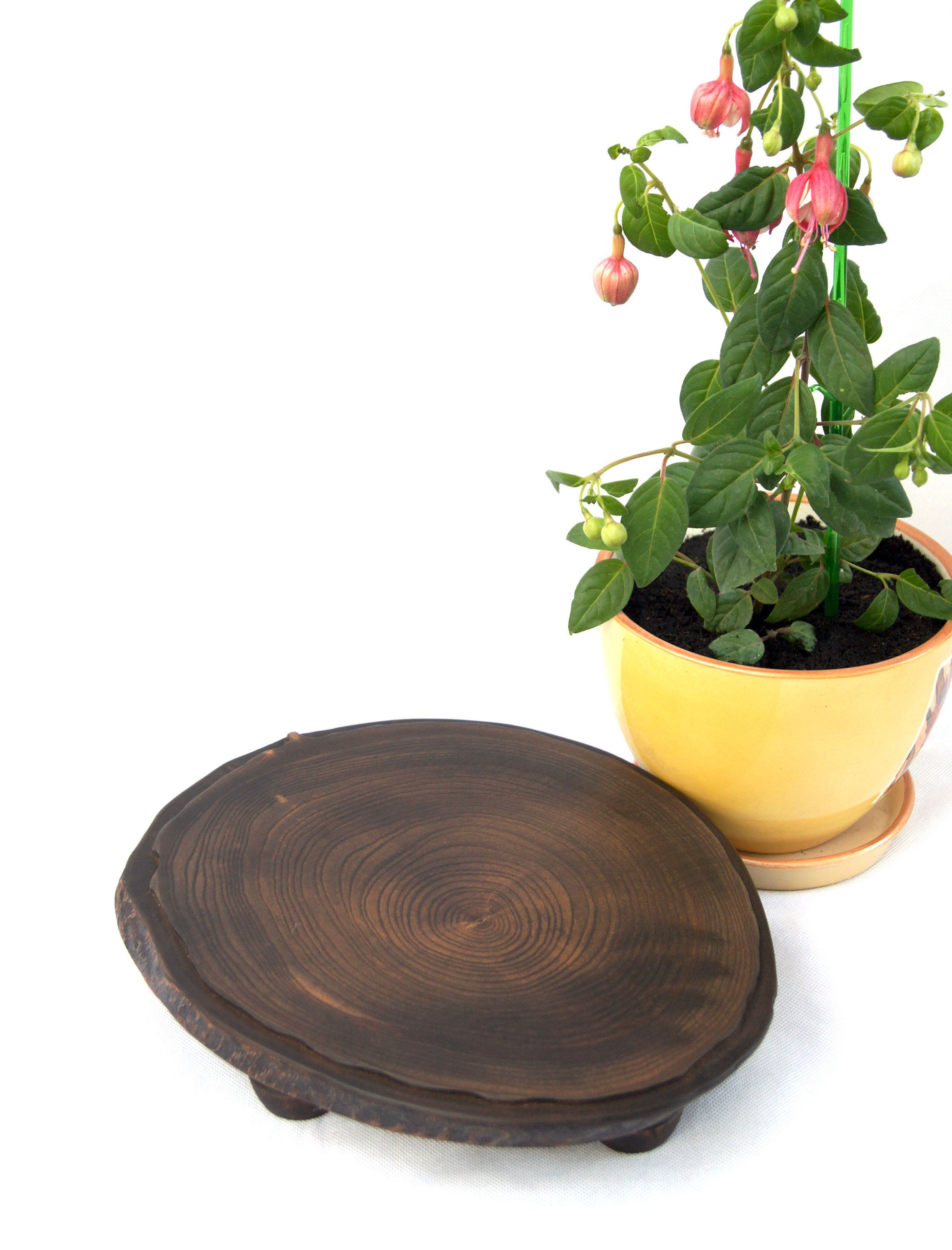 Small Live Edge Wood Slab Plant Stand Indoor Rustic Wooden Planter Stand With Legs Bonsai Pot Stand Flower Pot Holder Acacia Tree Stump Base In 2020