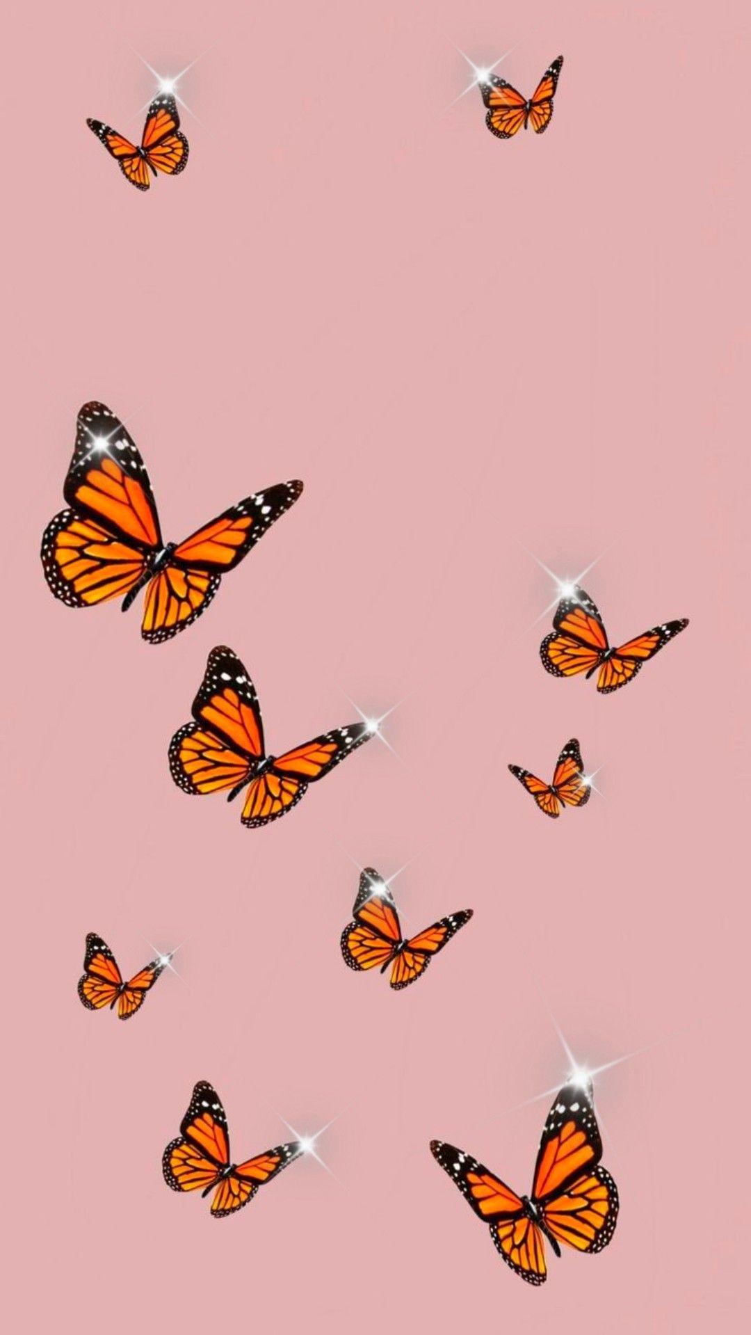 Shiny butterflies🦋 in 2020 | Butterfly wallpaper iphone ...