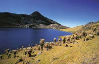Laguna de superpáramo en la Sierra Nevada del Cocuy.