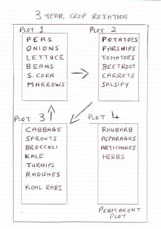 how to design a vegetable garden plan layout with 3 yr crop rotation
