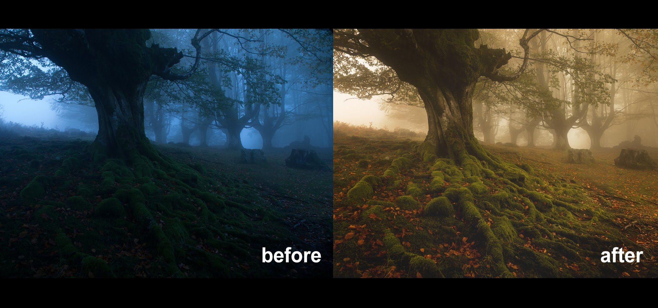 Cj7 How To Edit A Foggy Moody Landscape In Photoshop Dark Photo Manipulation Landscape Photoshop