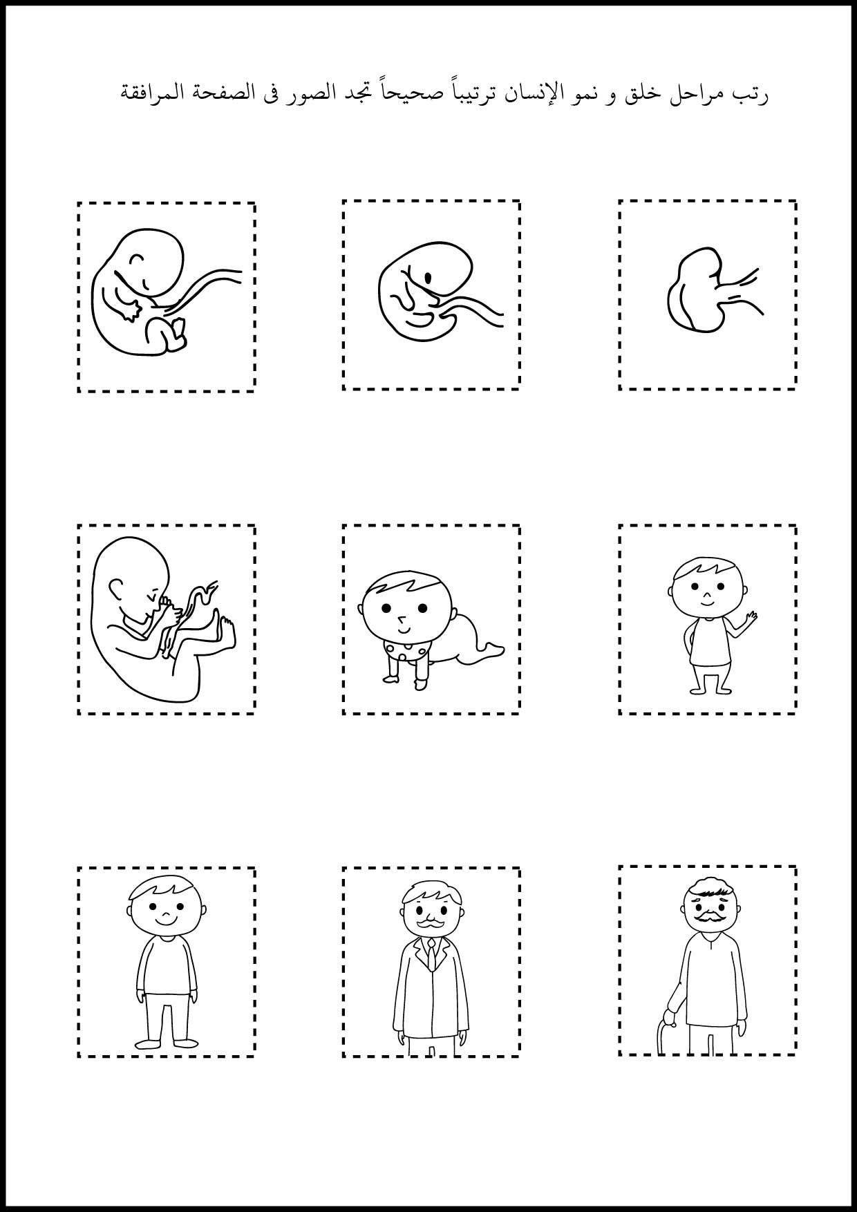 شرح المولد الديبعي pdf