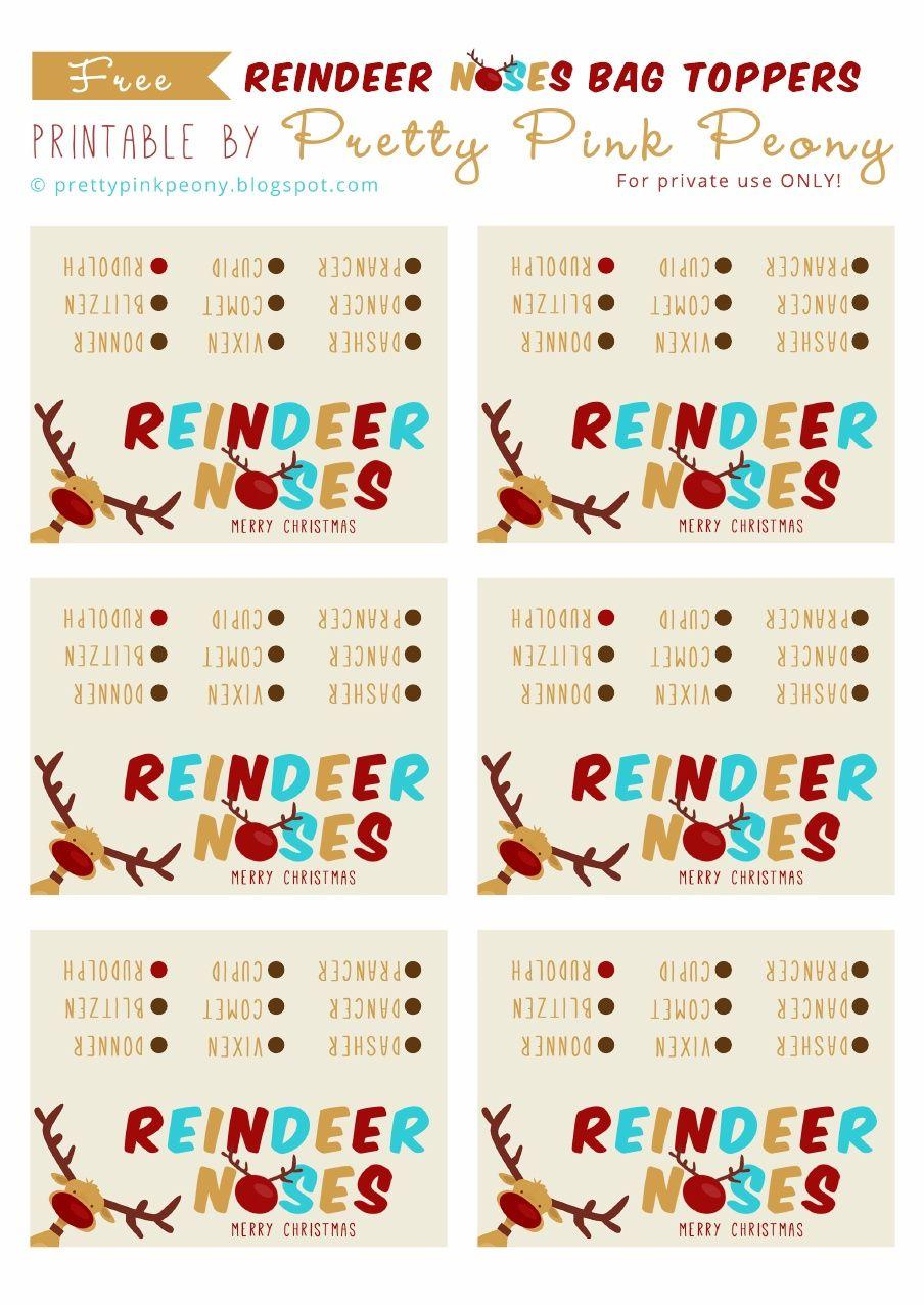 photo regarding Reindeer Noses Printable named Reindeer Noses Printable Scribd  Xmas Snacks! Reind